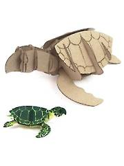 Build-Its Chip Turtle