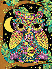 Pencil-by-Number Night Owl