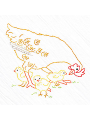 Hen and Chicks Tea Towel Kit