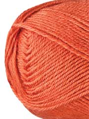Premier� Yarns Ever Soft Persimmon