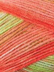 Premier� Yarns Deborah Norville Serenity Garden Orange Tree