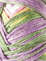 Premier® Yarns Deborah Norville Serenity Garden Mountain Heather